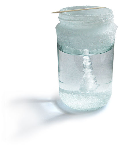 Salt crystal growing in jar