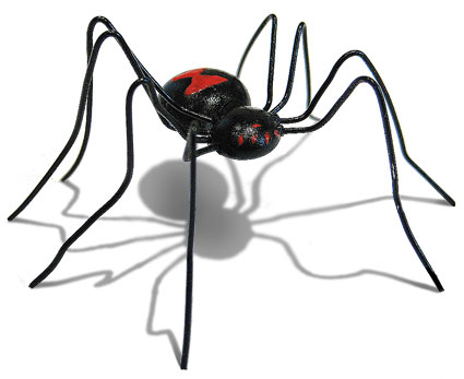 Glue gun bug, Black Widow Spider