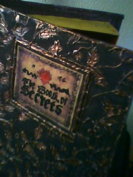 Nyunyu's Secret Box Book