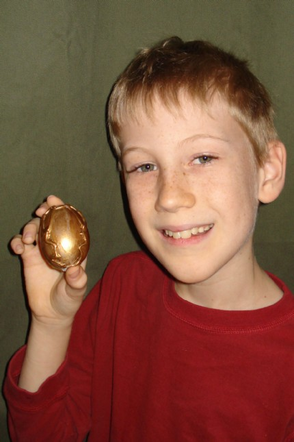 dragonboy10's Dragon Egg